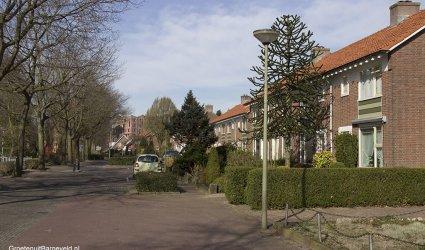 Lijsterstraat, barneveld - 2014